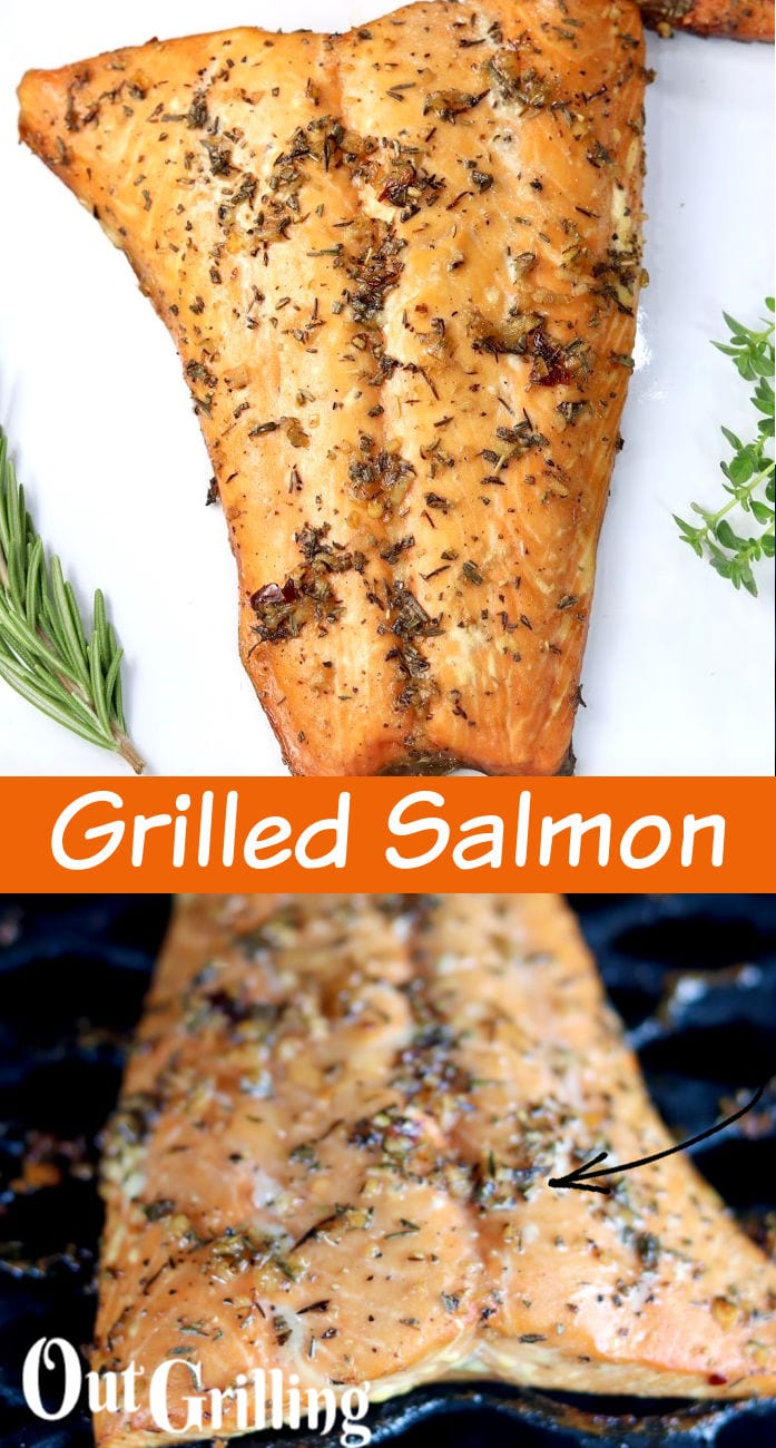 Grilled salmon collage with grill photo