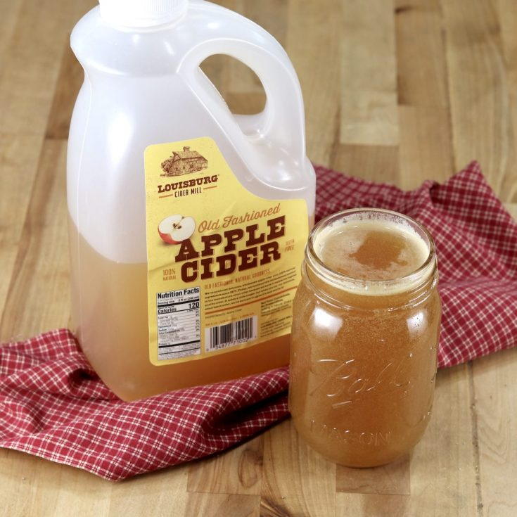 Apple Cider Marinade in a pint jar with jug of apple cider on a red check napkin