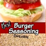 best burger seasoning collage: burger on a bun/ seasoning in a bowl