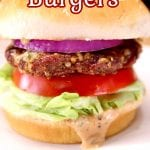 text overlay - closeup of grilled mozzarella burger