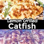 lemon grilled catfish collage: plated / on grill
